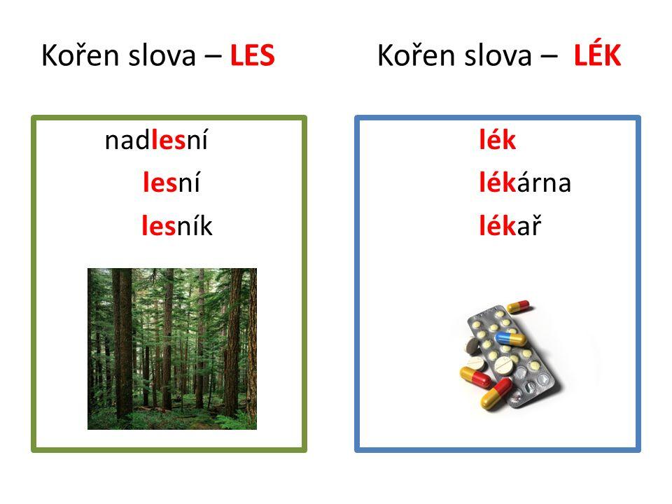 Kořen slova – LES Kořen slova – LÉK nnadlesní Lesní lesní l lesník lék lékárna lékař