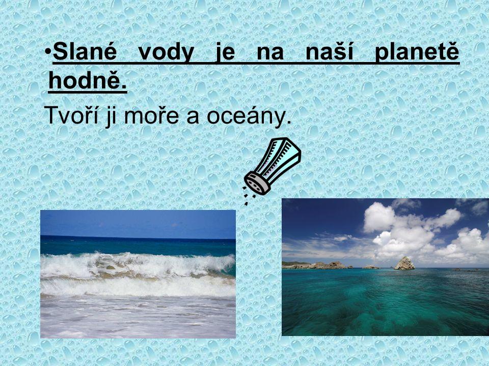 Slané vody je na naší planetě hodně. Tvoří ji moře a oceány.