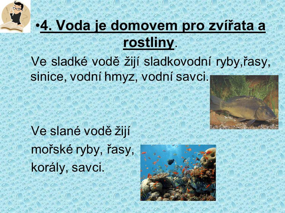 4. Voda je domovem pro zvířata a rostliny.