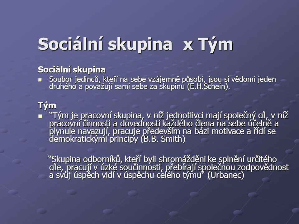 Sociální skupina x Tým Sociální skupina Soubor jedinců, kteří na sebe vzájemně působí, jsou si vědomi jeden druhého a považují sami sebe za skupinu (E