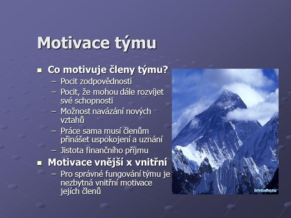 Motivace týmu Co motivuje členy týmu? Co motivuje členy týmu? –Pocit zodpovědnosti –Pocit, že mohou dále rozvíjet své schopnosti –Možnost navázání nov
