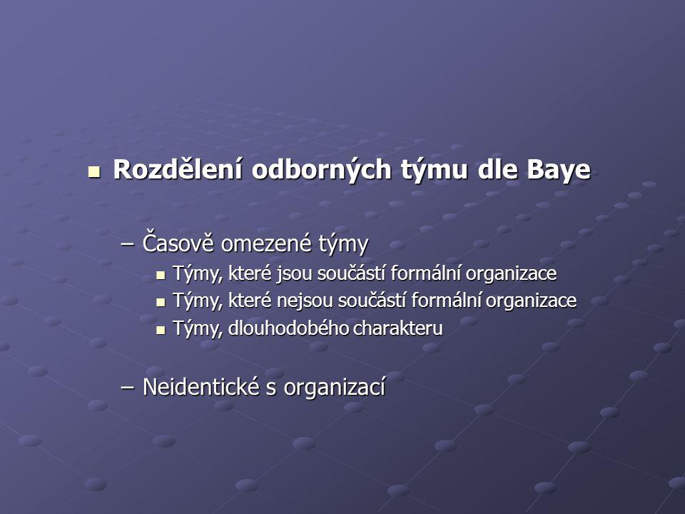 Rozdělení odborných týmu dle Baye Rozdělení odborných týmu dle Baye –Časově omezené týmy Týmy, které jsou součástí formální organizace Týmy, které jsou součástí formální organizace Týmy, které nejsou součástí formální organizace Týmy, které nejsou součástí formální organizace Týmy, dlouhodobého charakteru Týmy, dlouhodobého charakteru –Neidentické s organizací