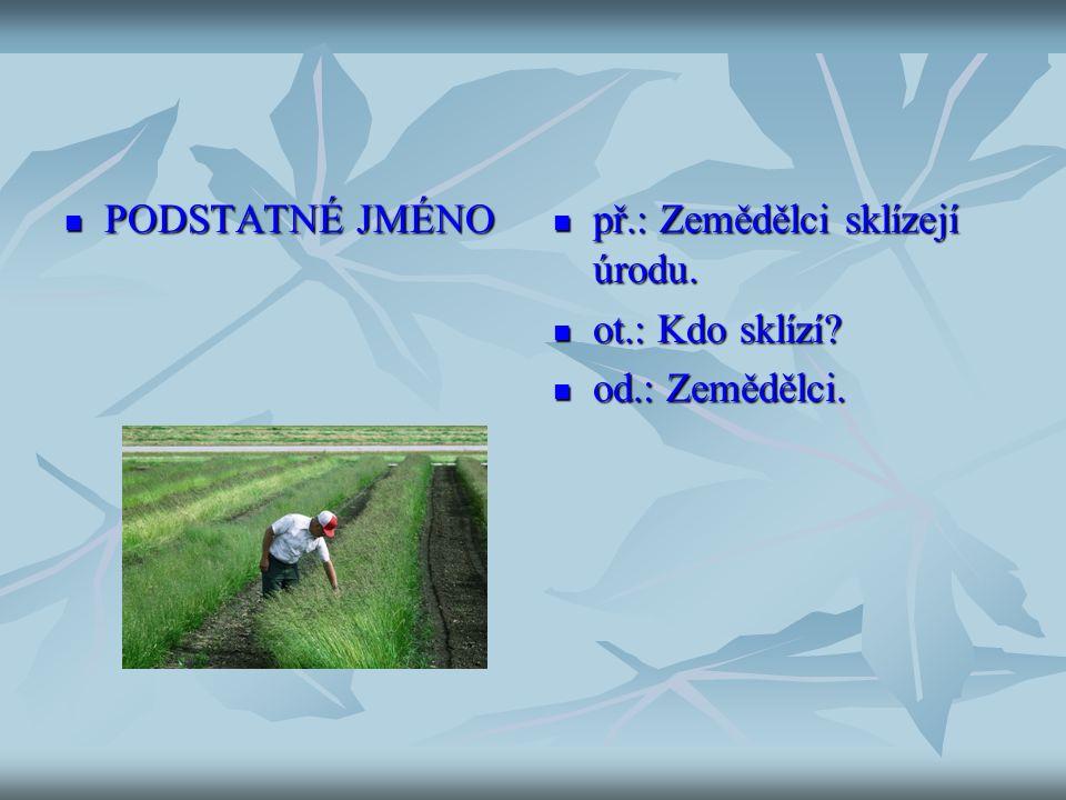 PODSTATNÉ JMÉNO PODSTATNÉ JMÉNO př.: Zemědělci sklízejí úrodu.