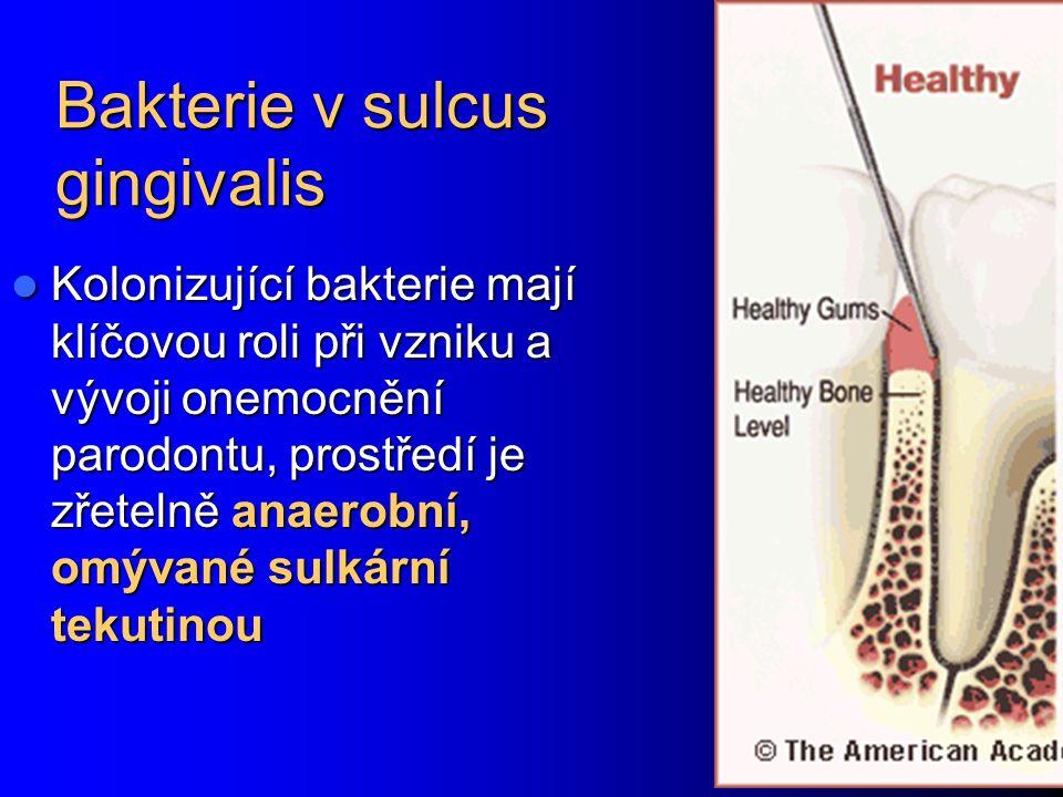 Bakterie v sulcus gingivalis Kolonizující bakterie mají klíčovou roli při vzniku a vývoji onemocnění parodontu, prostředí je zřetelně anaerobní, omývané sulkární tekutinou Kolonizující bakterie mají klíčovou roli při vzniku a vývoji onemocnění parodontu, prostředí je zřetelně anaerobní, omývané sulkární tekutinou