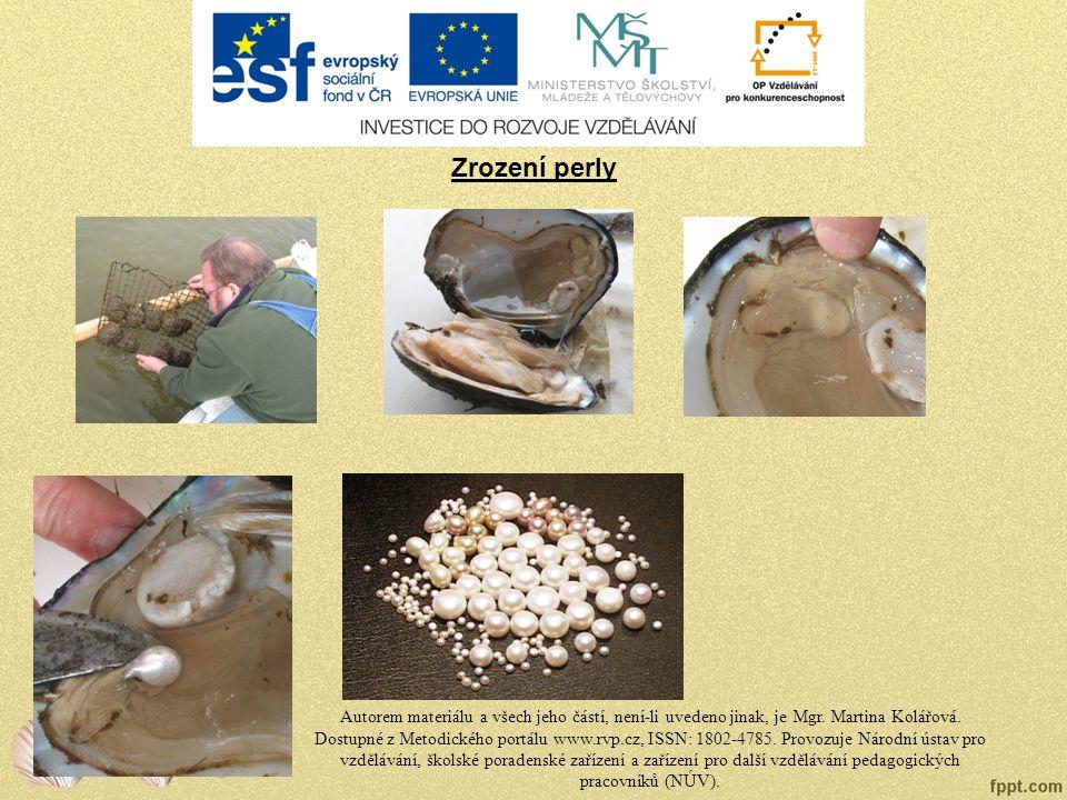 Zrození perly Autorem materiálu a všech jeho částí, není-li uvedeno jinak, je Mgr.
