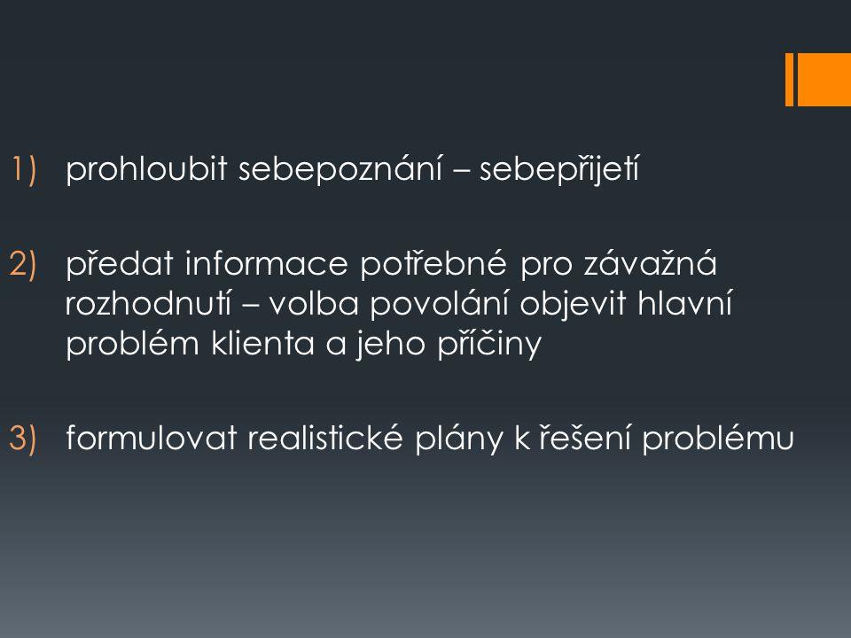1)prohloubit sebepoznání – sebepřijetí 2)předat informace potřebné pro závažná rozhodnutí – volba povolání objevit hlavní problém klienta a jeho příčiny 3)formulovat realistické plány k řešení problému