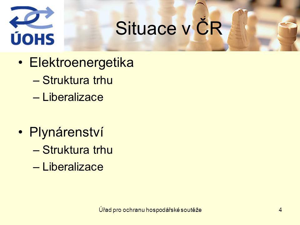 Úřad pro ochranu hospodářské soutěže4 Situace v ČR Elektroenergetika –Struktura trhu –Liberalizace Plynárenství –Struktura trhu –Liberalizace