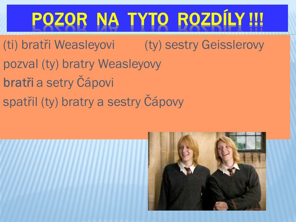 (ti) bratři Weasleyovi (ty) sestry Geisslerovy pozval (ty) bratry Weasleyovy bratři a setry Čápovi spatřil (ty) bratry a sestry Čápovy