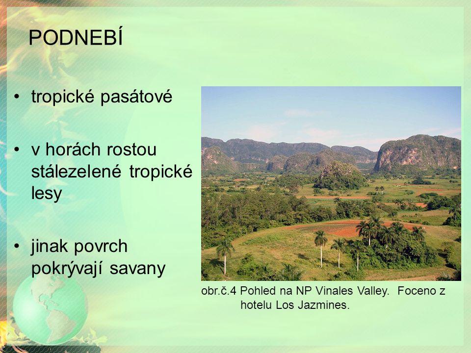 PODNEBÍ tropické pasátové v horách rostou stálezelené tropické lesy jinak povrch pokrývají savany obr.č.4 Pohled na NP Vinales Valley.