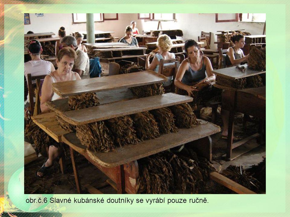 obr.č.6 Slavné kubánské doutníky se vyrábí pouze ručně.