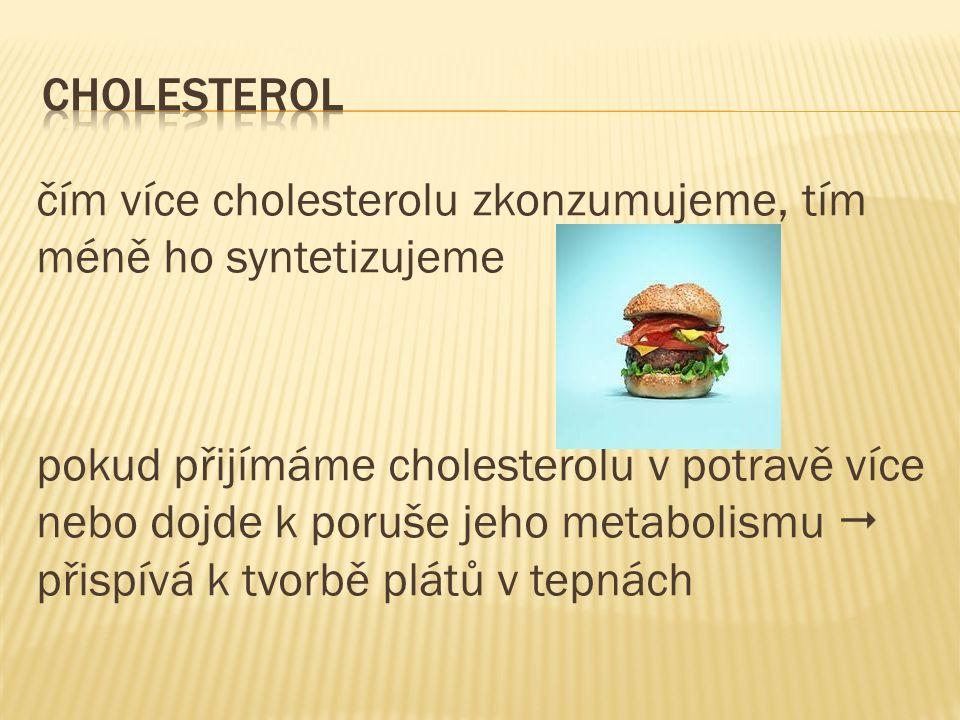 čím více cholesterolu zkonzumujeme, tím méně ho syntetizujeme pokud přijímáme cholesterolu v potravě více nebo dojde k poruše jeho metabolismu  přispívá k tvorbě plátů v tepnách