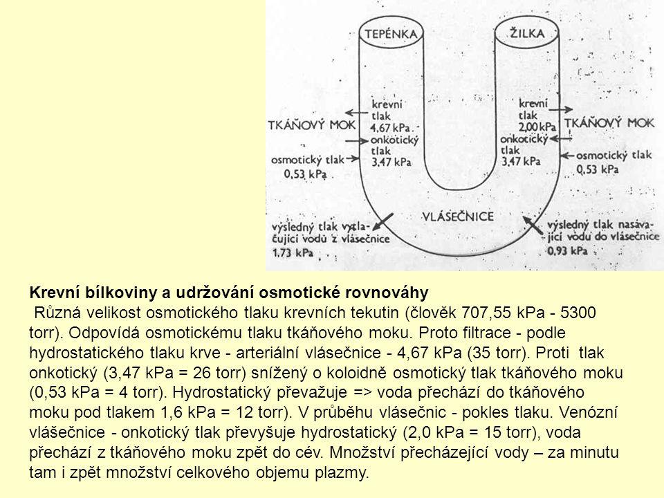 Krevní bílkoviny a udržování osmotické rovnováhy Různá velikost osmotického tlaku krevních tekutin (člověk 707,55 kPa - 5300 torr).