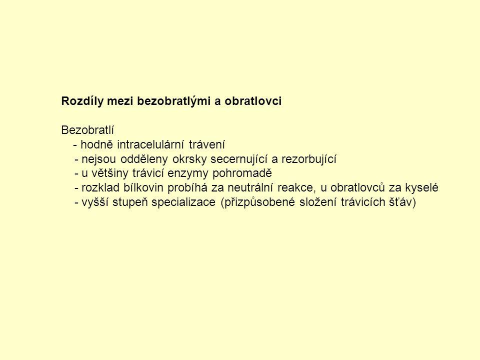 Vývoj termoregulace v ontogenezi Podle kvality termoregulace v okamžiku porodu: 1.
