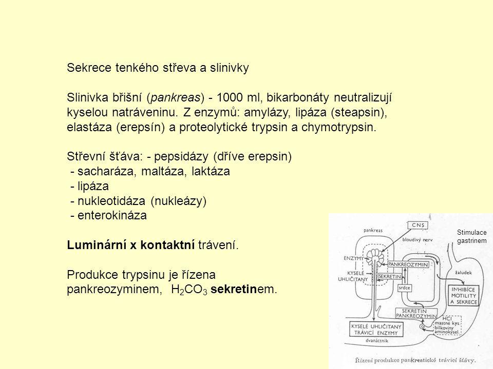 Přenos látek Trend fylogeneze: zvětšování složitějšího těla - uspokojování potřeb tkání Realizace: přenos pomocí tělních tekutin – hydrolymfa, hemolymfa, soustava krev - tkáňový mok - míza (lymfa) Prostřednictví: oběh tělních tekutin – cévní soustava