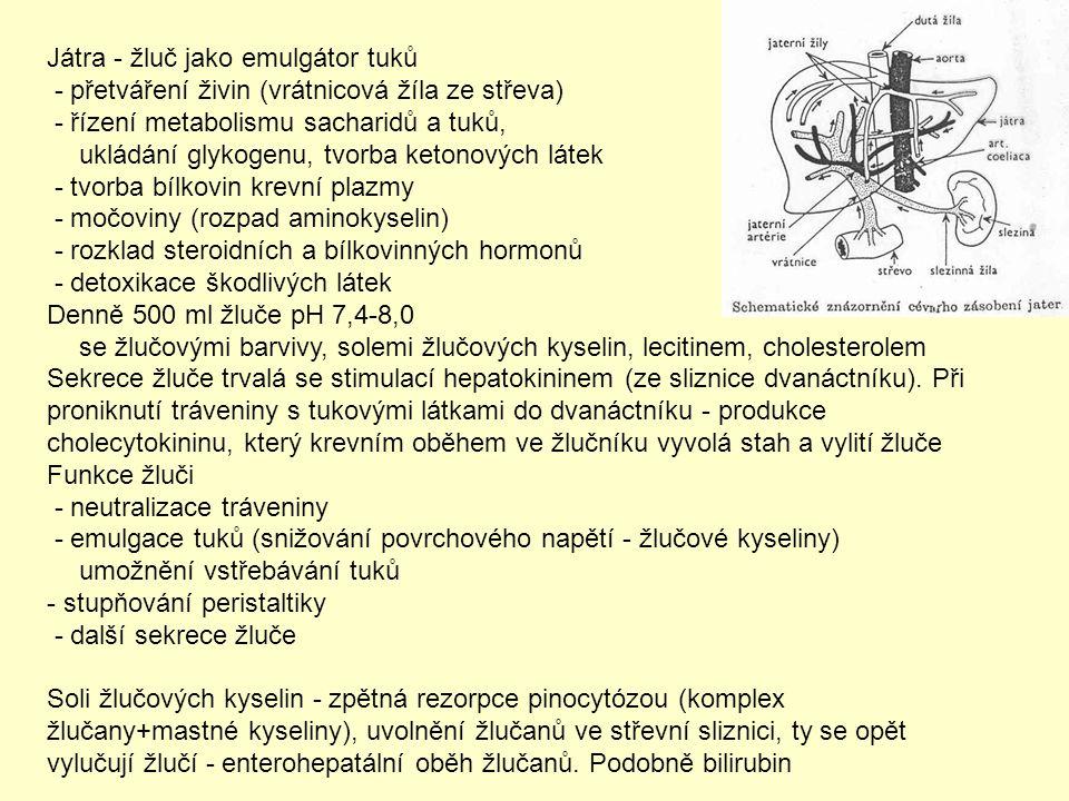 Vstřebávání látek (rezorpce) - převod látek z trávicí trubice do krevního oběhu a lymfy Jednotlivé části: ústa – malá intenzita vstřebávání (vícevrstevný epitel) žaludek - významnější, hodně léčiva a jedy (strychnin, HCN) předžaludky - kyselina octová, propionová, máselná tenké střevo - většina látek, zvětšení rezorpčního povrchu (spirální řasa až klky) Vstřebávání vody - zákonitosti osmózy (až 10 l denně) solí - poměrně rychle, pořadí: Cl - > Br - > NO 3 - > SO 4 2- > PO 4 3- > K + > Na + > Ca 2+ > Mg 2+ monosacharidů a aminokyselin – do krevních vlásečnic v klcích Nejsložitější vstřebávání tuků - nutnost emulgace žlučí =>zvětšení plochy pro působení lipázy, komplexy MK se žlučovými kyselinami - micely.