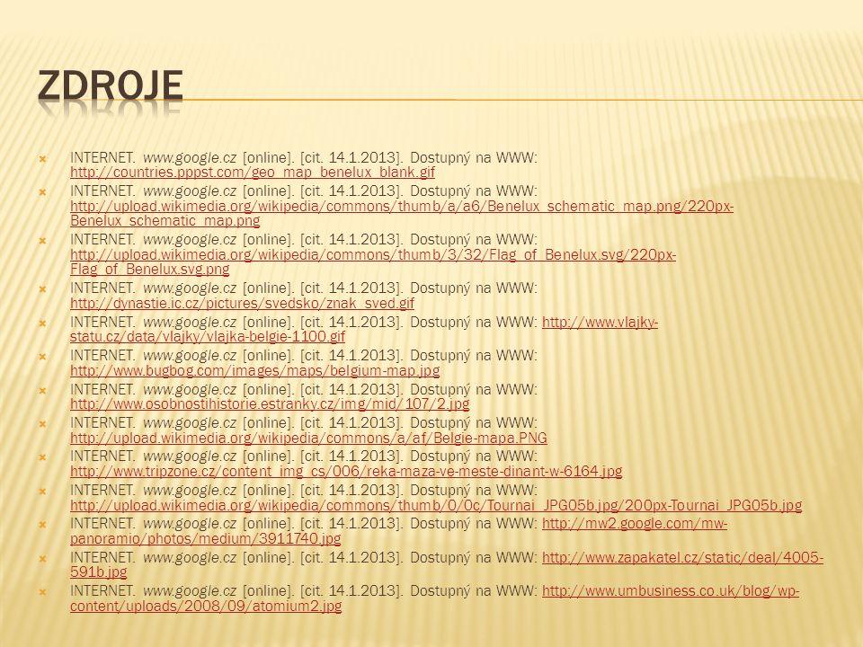  INTERNET. www.google.cz [online]. [cit. 14.1.2013].