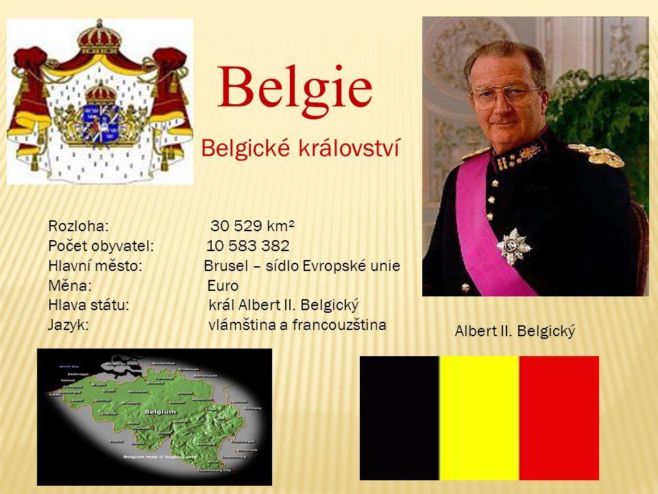 Belgie Belgické království Rozloha: 30 529 km² Počet obyvatel: 10 583 382 Hlavní město: Brusel – sídlo Evropské unie Měna: Euro Hlava státu: král Albert II.