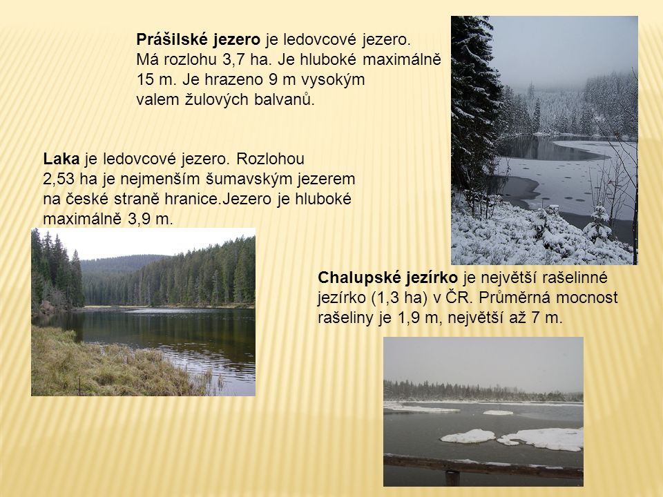 Prášilské jezero je ledovcové jezero. Má rozlohu 3,7 ha. Je hluboké maximálně 15 m. Je hrazeno 9 m vysokým valem žulových balvanů. Laka je ledovcové j