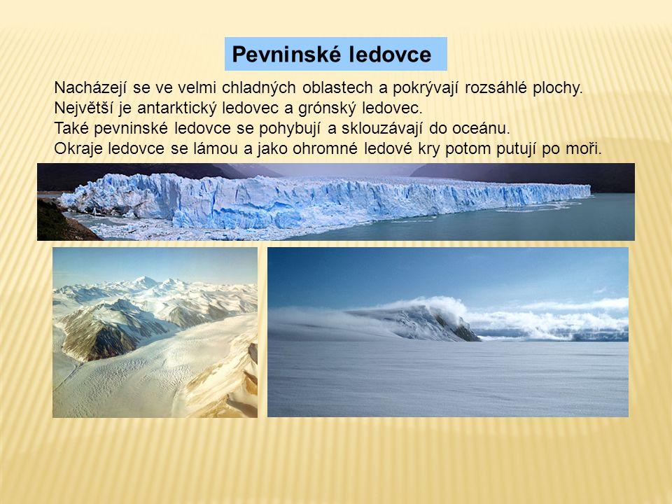 Nacházejí se ve velmi chladných oblastech a pokrývají rozsáhlé plochy.