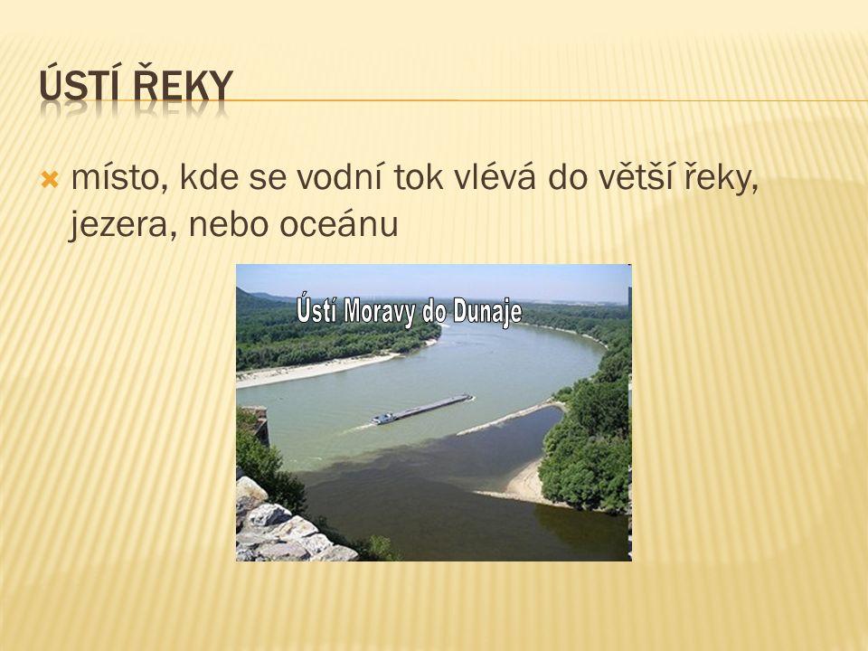  místo, kde se vodní tok vlévá do větší řeky, jezera, nebo oceánu