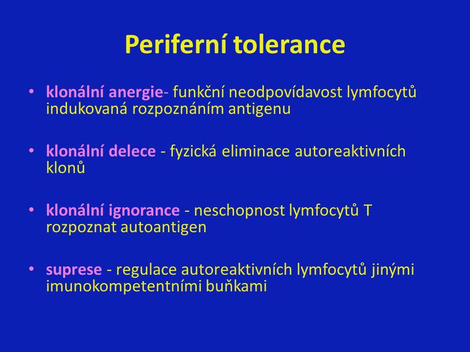 Periferní tolerance klonální anergie- funkční neodpovídavost lymfocytů indukovaná rozpoznáním antigenu klonální delece - fyzická eliminace autoreaktivních klonů klonální ignorance - neschopnost lymfocytů T rozpoznat autoantigen suprese - regulace autoreaktivních lymfocytů jinými imunokompetentními buňkami