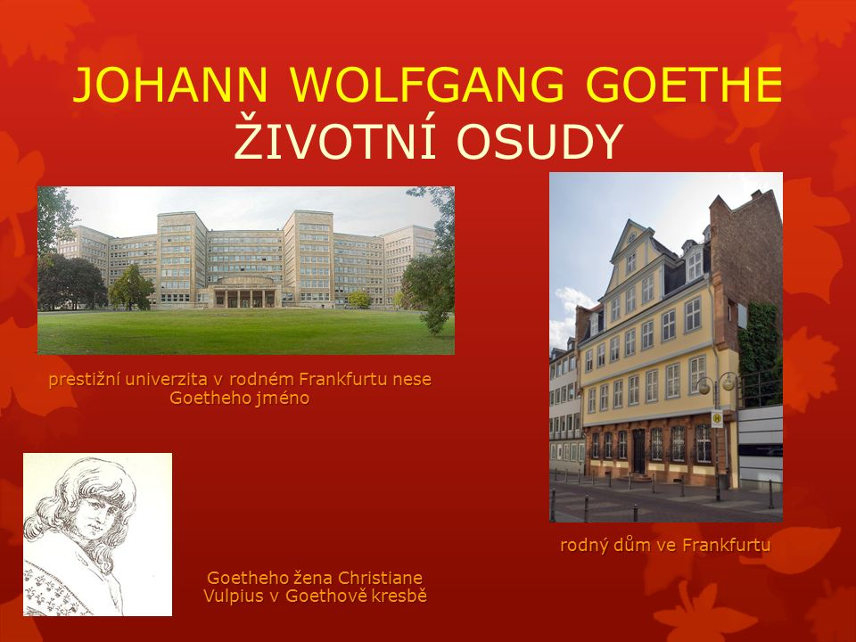 JOHANN WOLFGANG GOETHE ŽIVOTNÍ OSUDY prestižní univerzita v rodném Frankfurtu nese Goetheho jméno rodný dům ve Frankfurtu Goetheho žena Christiane Vulpius v Goethově kresbě