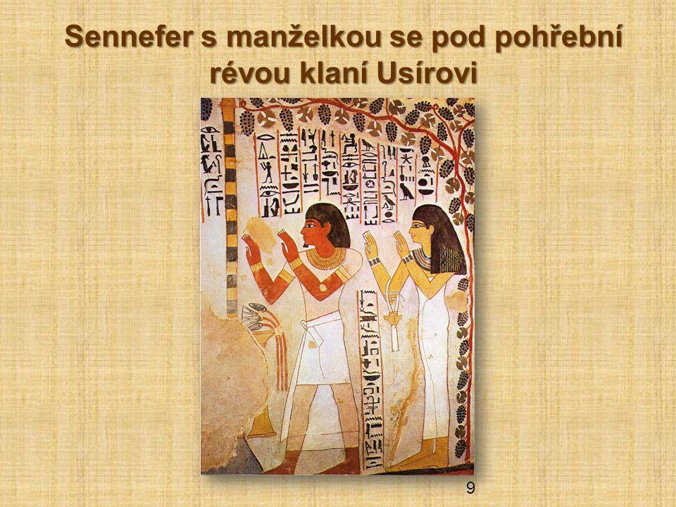 Sennefer s manželkou se pod pohřební révou klaní Usírovi 9
