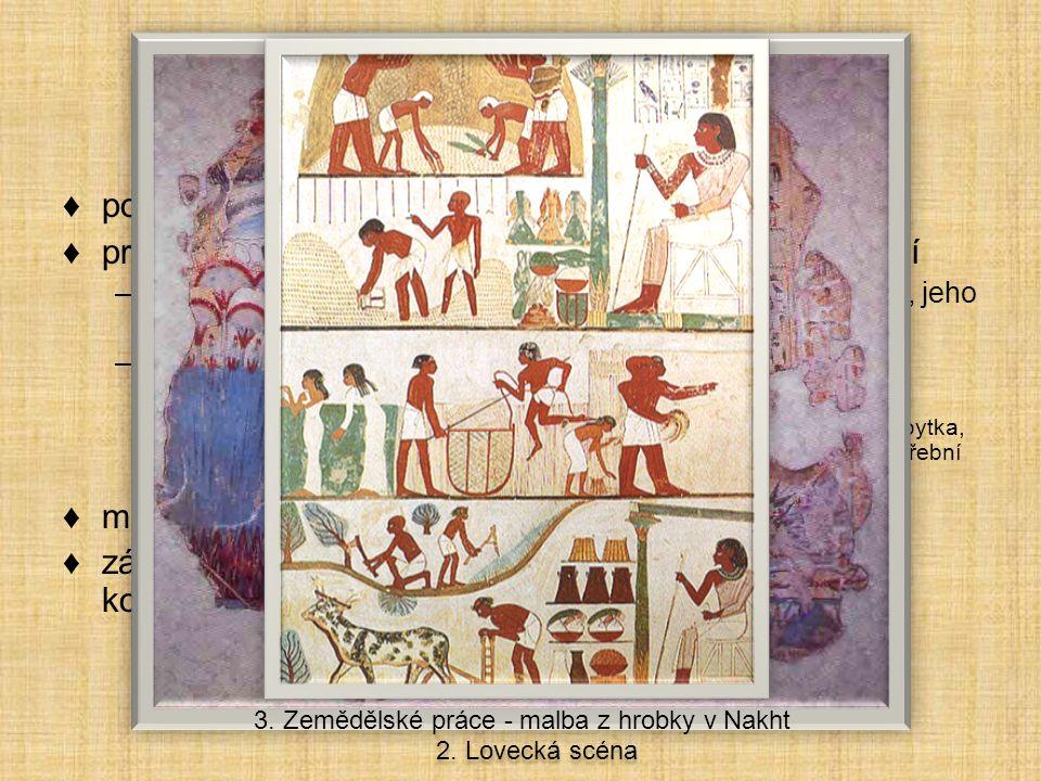Citace k opakování sochařství starověkého Egypta A.Sfinga v Gíze: Vlastní dílo B.Busta Nefertiti: MANSKE, Magnus.