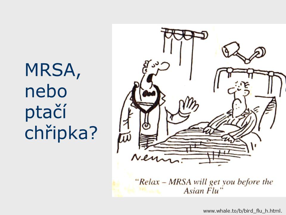 MRSA, nebo ptačí chřipka www.whale.to/b/bird_flu_h.html.