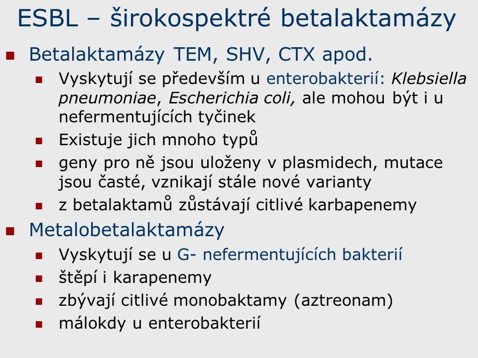 ESBL – širokospektré betalaktamázy Betalaktamázy TEM, SHV, CTX apod.