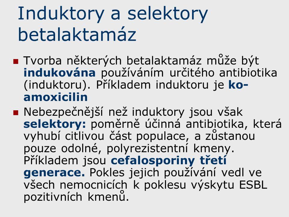 Induktory a selektory betalaktamáz Tvorba některých betalaktamáz může být indukována používáním určitého antibiotika (induktoru).