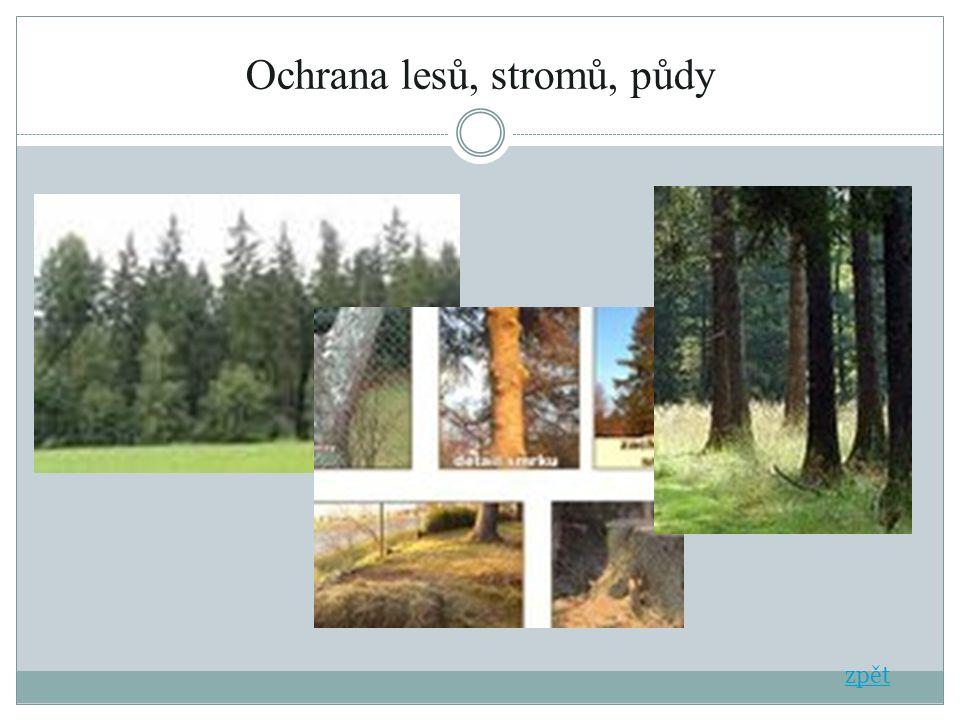 Ochrana lesů, stromů, půdy zpět
