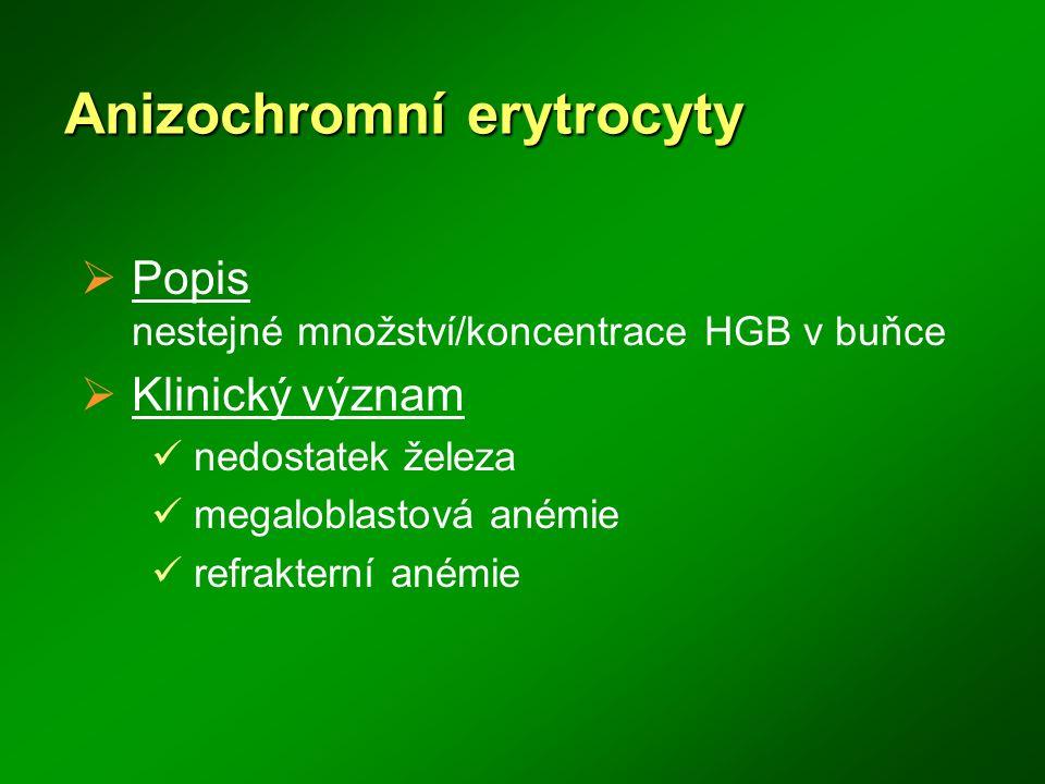 Anizochromní erytrocyty  Popis nestejné množství/koncentrace HGB v buňce  Klinický význam nedostatek železa megaloblastová anémie refrakterní anémie