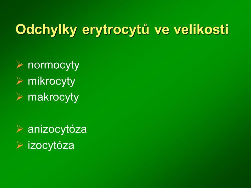Polychromní erytrocyty  Velikost: 8 – 11 μ  Popis zbytková bazofílie cytoplazmy (rezidua RNA), mladé RBC  Klinický význam hemolytické anémie megaloblastová anémie nedostatek železa anémie chronických onemocnění kongenitální dyserytropoetické anémie