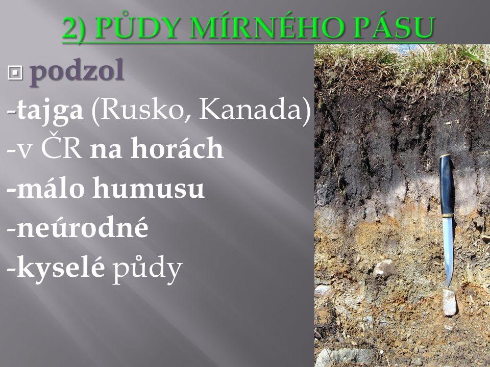  podzol - - tajga (Rusko, Kanada) -v ČR na horách -málo humusu - neúrodné - kyselé půdy http://cs.wikipedia.org/wiki/Podzol#mediaviewer/File:Podzol.jpg
