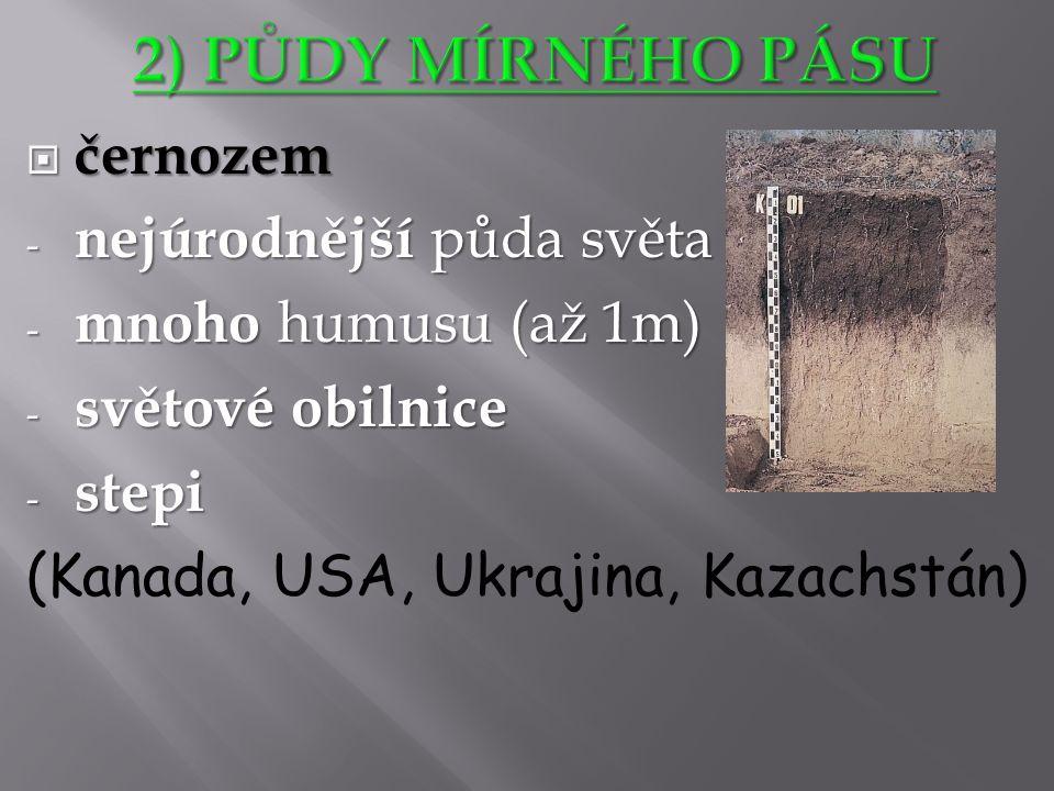 http://leccos.com/index.php/clanky/cernoz em  černozem - nejúrodnější půda světa - mnoho humusu (až 1m) - světové obilnice - stepi (Kanada, USA, Ukrajina, Kazachstán)