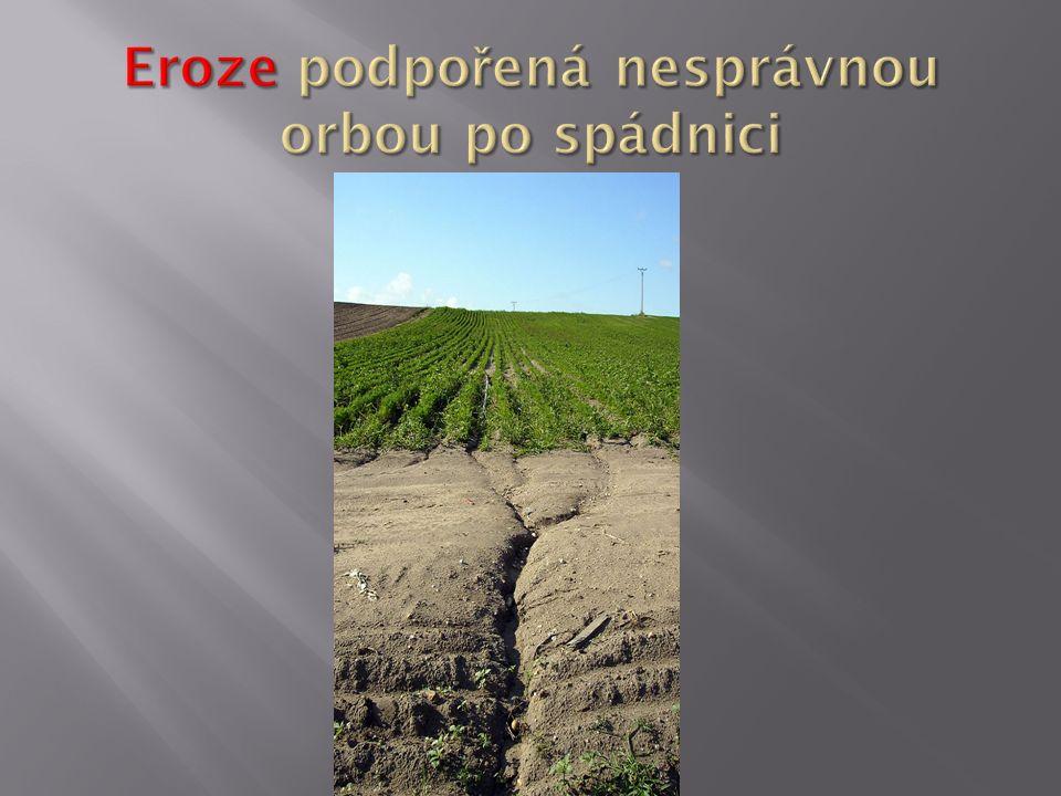 http://cs.wikipedia.org/wiki/Eroze#mediaviewer/File:Eroze_u_Prerova_nad_Labem.jpg
