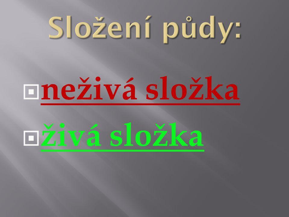 http://cs.wikipedia.org/wiki/ Kambizem#mediaviewer/File: Braunerde_Conv.jpg  hnědá lesní půdy = kambizem - středně úrodná - málo humusu - v ČR nejrozšířenější