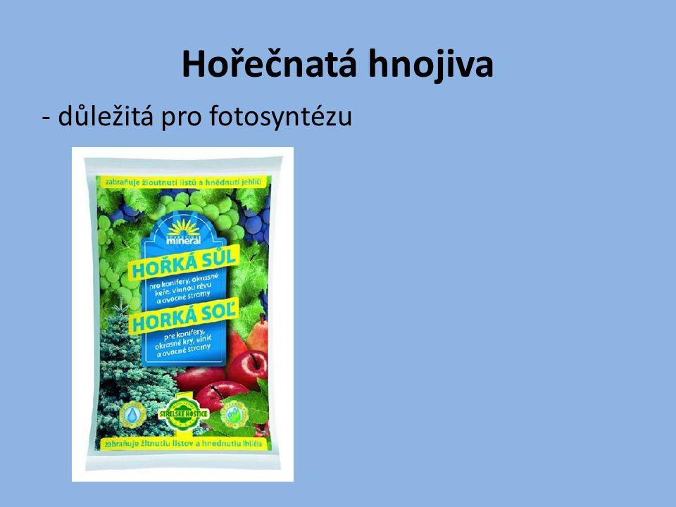 Hořečnatá hnojiva - důležitá pro fotosyntézu