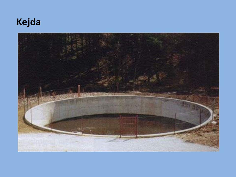 Vápenatá hnojiva - důležitá pro tvorbu kořenového systému