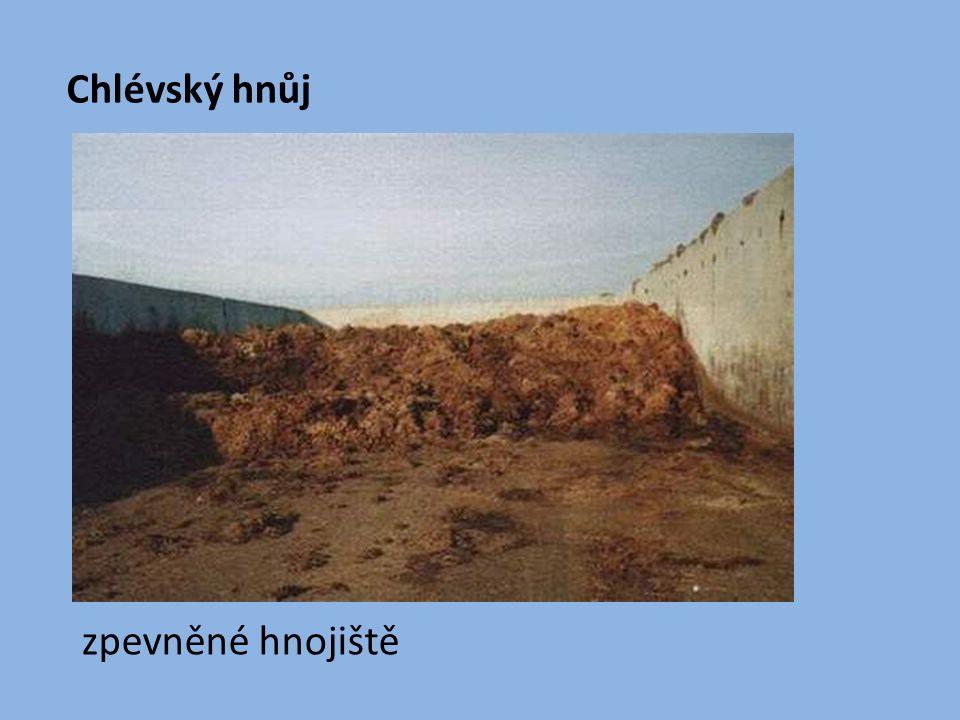 Ostatní hnojiva Zelená skalice - zdroj železa Nedostatek železa: chloróza = žloutnutí listů