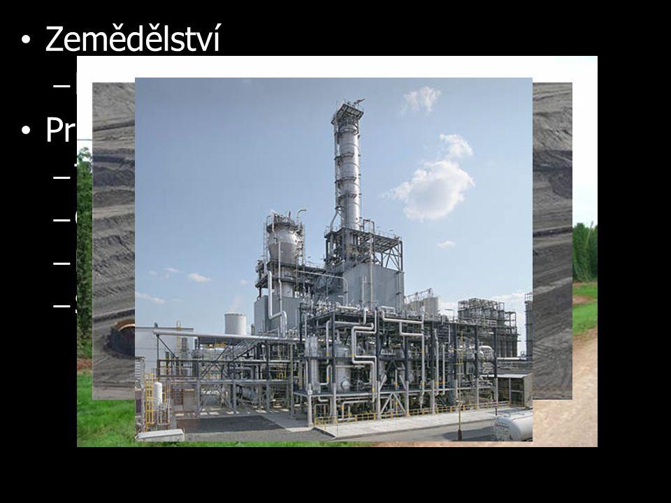 Zemědělství – Pěstování ovoce a chmele Průmysl – Těžba hnědého uhlí (Mostecká pánev) – Chemický průmysl (Ústí nad Labem) – Petrochemie (Litvínov) – Sklárny a porcelánky