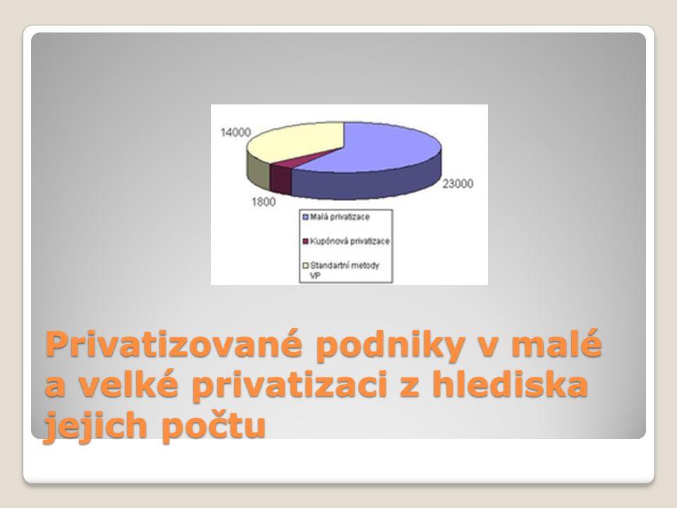 Privatizované podniky v malé a velké privatizaci z hlediska jejich počtu
