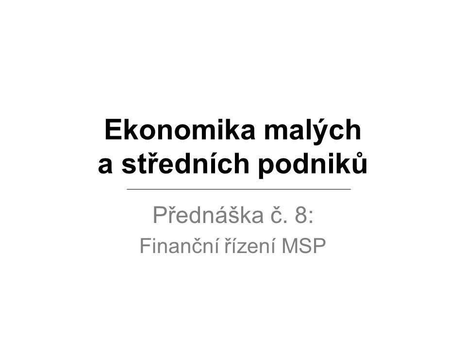 Ekonomika malých a středních podniků Přednáška č. 8: Finanční řízení MSP