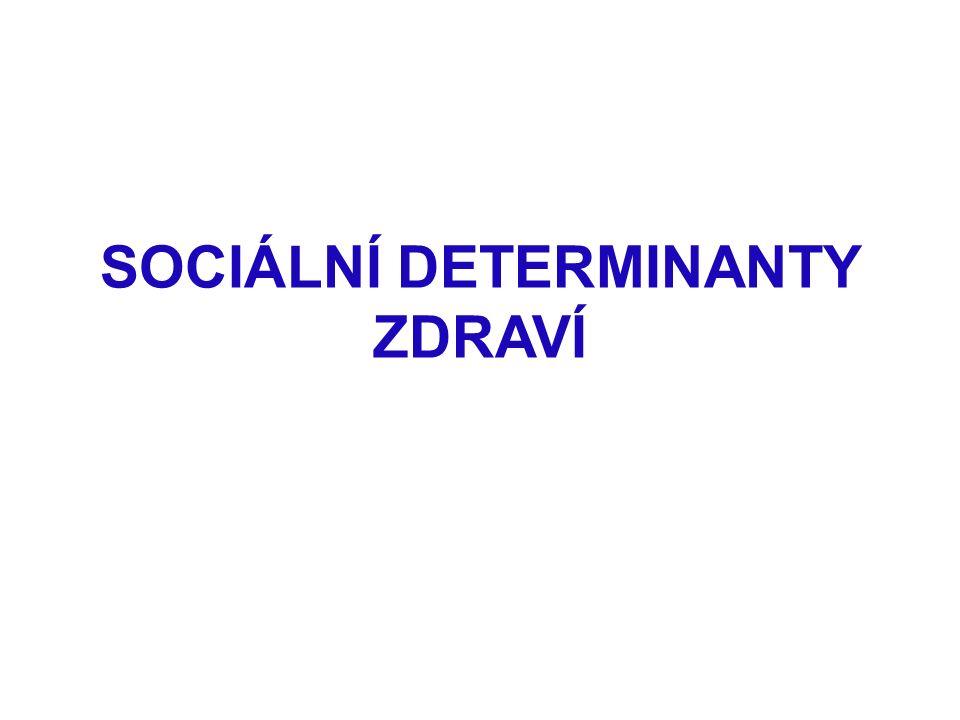 SOCIÁLNÍ DETERMINANTY ZDRAVÍ