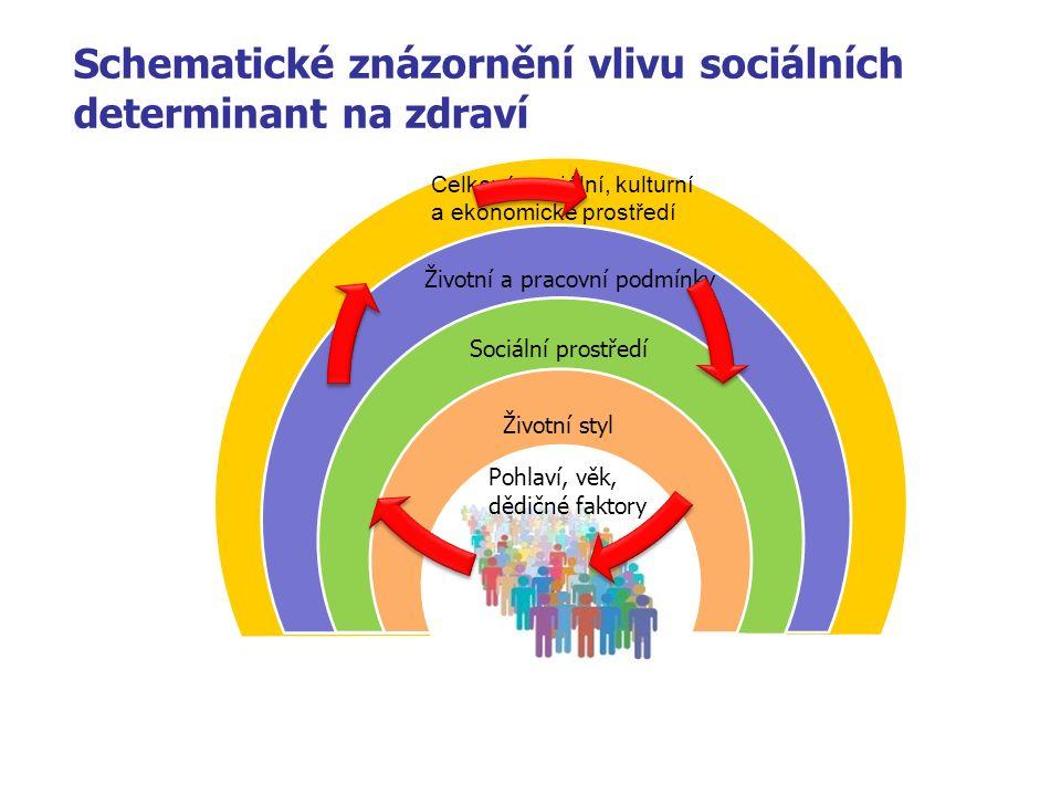 Schematické znázornění vlivu sociálních determinant na zdraví Pohlaví, věk, dědičné faktory Životní styl Sociální prostředí Životní a pracovní podmínky Celkové sociální, kulturní a ekonomické prostředí