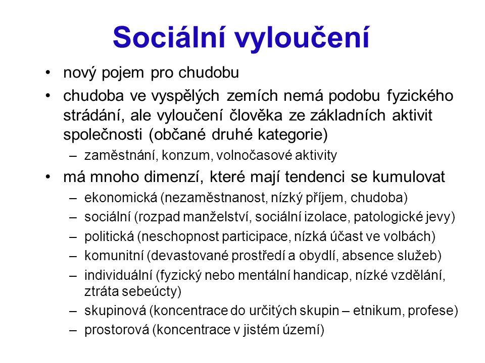 Sociální vyloučení nový pojem pro chudobu chudoba ve vyspělých zemích nemá podobu fyzického strádání, ale vyloučení člověka ze základních aktivit společnosti (občané druhé kategorie) –zaměstnání, konzum, volnočasové aktivity má mnoho dimenzí, které mají tendenci se kumulovat –ekonomická (nezaměstnanost, nízký příjem, chudoba) –sociální (rozpad manželství, sociální izolace, patologické jevy) –politická (neschopnost participace, nízká účast ve volbách) –komunitní (devastované prostředí a obydlí, absence služeb) –individuální (fyzický nebo mentální handicap, nízké vzdělání, ztráta sebeúcty) –skupinová (koncentrace do určitých skupin – etnikum, profese) –prostorová (koncentrace v jistém území)