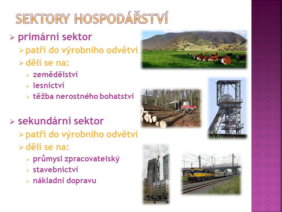  primární sektor  patří do výrobního odvětví  dělí se na:  zemědělství  lesnictví  těžba nerostného bohatství  sekundární sektor  patří do výrobního odvětví  dělí se na:  průmysl zpracovatelský  stavebnictví  nákladní dopravu