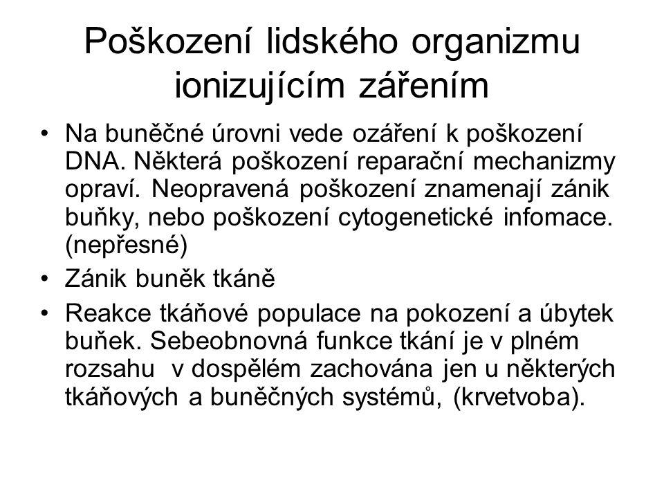 Poškození lidského organizmu ionizujícím zářením Na buněčné úrovni vede ozáření k poškození DNA.