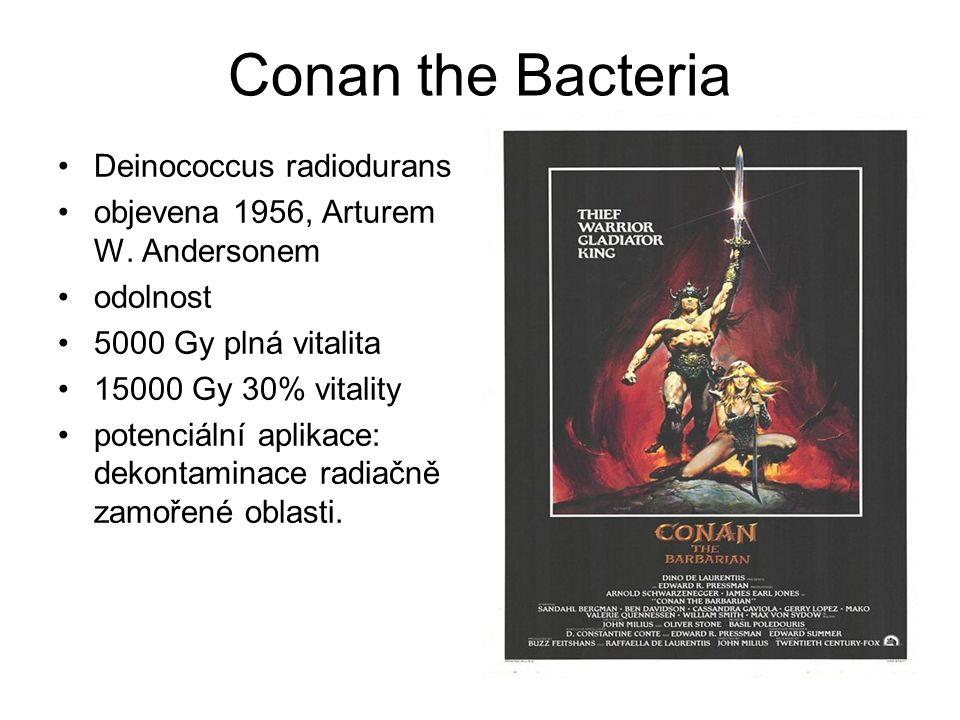 Conan the Bacteria Deinococcus radiodurans objevena 1956, Arturem W.